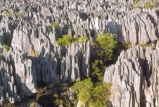 mg-rotsbergen madagaskar.jpg