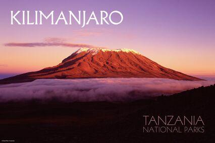 tz-kilimanjaro.jpg